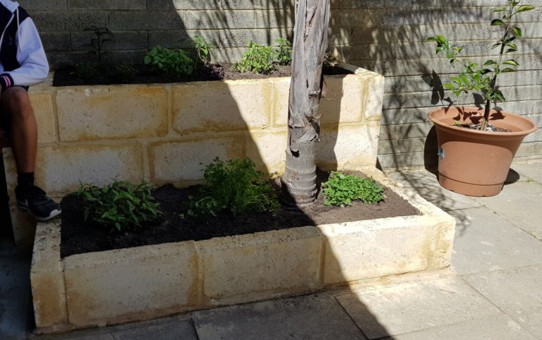 Herb Garden Built by Year 12 General Building and Construction